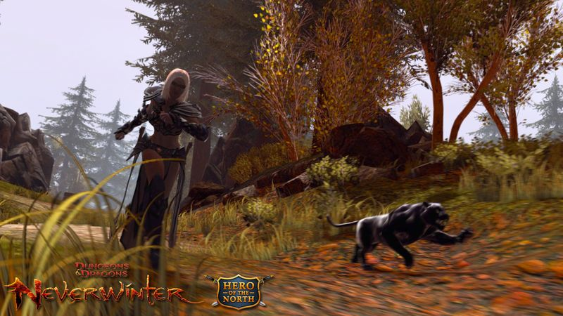 Neverwinter Gets Open Beta Weekends and Founder's Packs